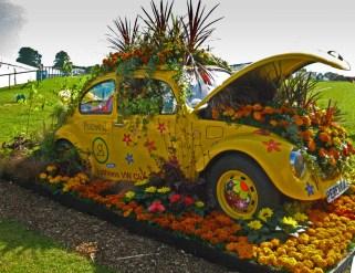 Perennial Car
