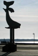 Prince Rupert, Canada - Tails up